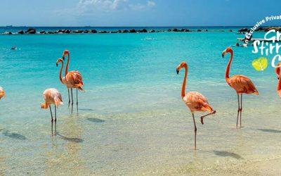 Caribe sur desde Orlando (Puerto Cañaveral), 10 días en Norwegian Sun