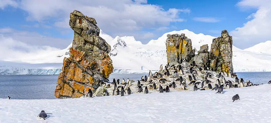 Antártida desde Buenos Aires, 15 días
